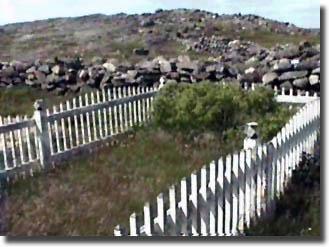 Grates Cove UC Cemetery