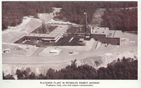 fletcher_plant.jpg (58996 bytes)