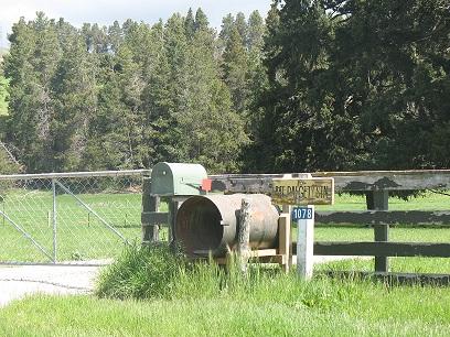 South Canterbury, New Zealand  Sheep farming terms