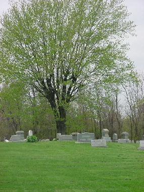 Harlem Springs cemetery view