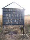 Beaver 374