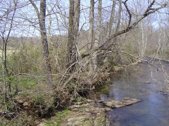 Nottely River
