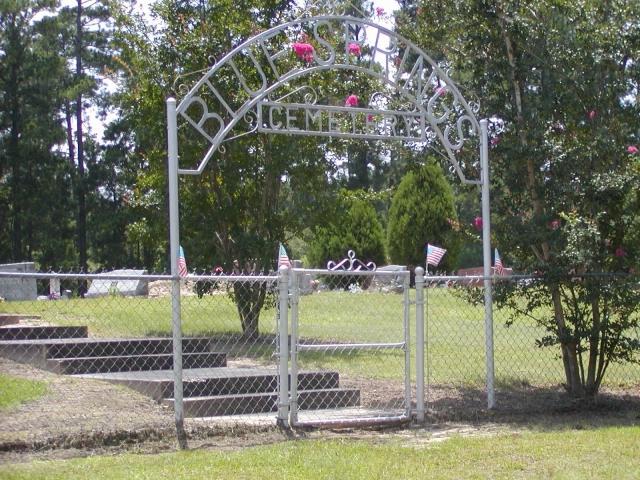 Blue Springs Gate 1